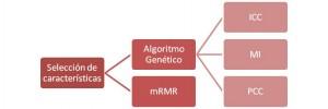 Selección de características del software