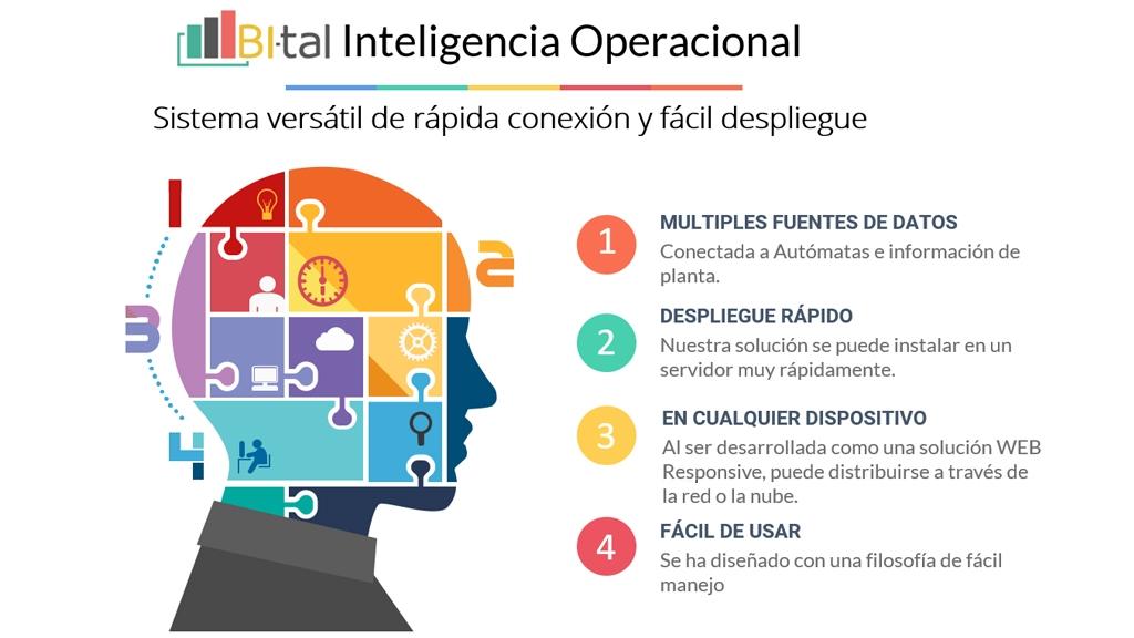 Bital, Inteligencia Operacional a tu servicio (I)