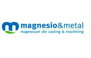 Magnesio y metal
